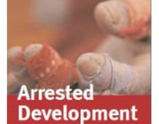 Arrested Development: Discrimination and Slavery in the 21st Century – 2008 Anti-Slavery International