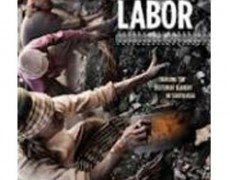 Bonded Labor: Trackling the System of Slavery in South Asia – Siddarth Kara, 2012